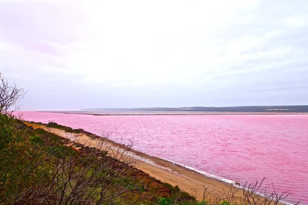 Pink-Lake-Port-Gregory