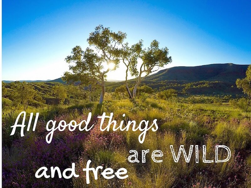 All good things are wilde and free