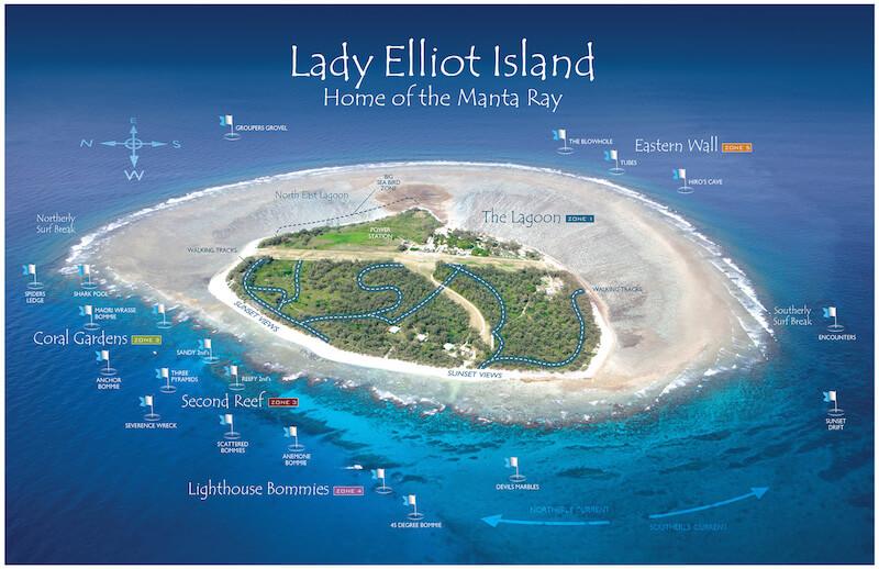 lady-elliot-island