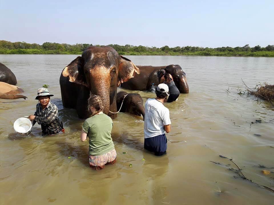 Bagnetto con gli elefanti!
